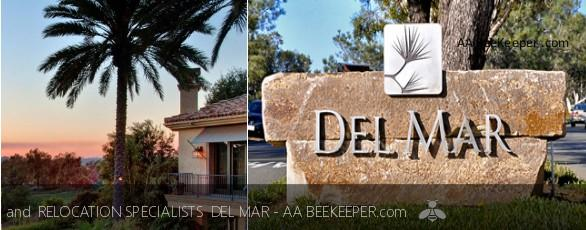 Del Mar Bee Removal and Del Mar Beekeeper