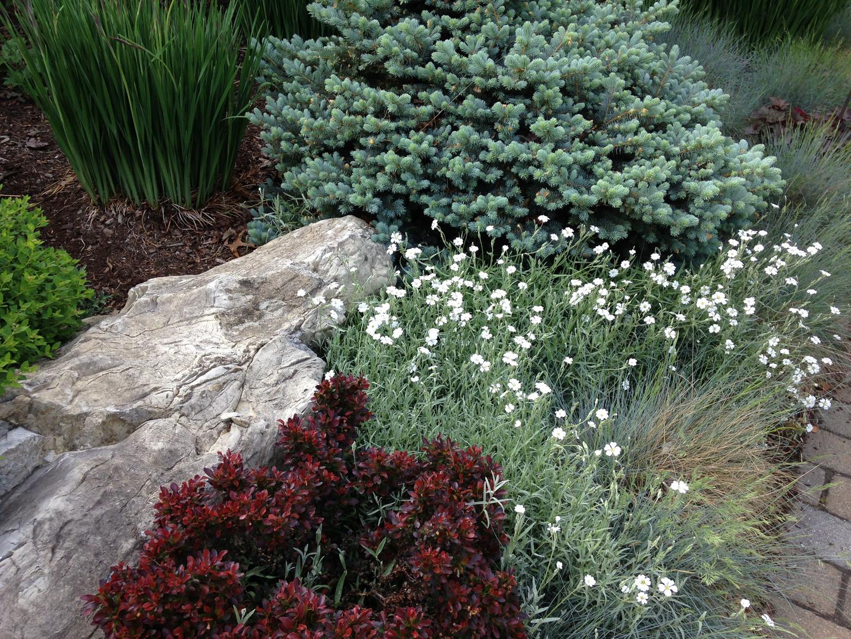 Samples Naturalized Woodland Garden Slope Design on woodland garden area, woodland garden trail, woodland garden shade, woodland garden stream,