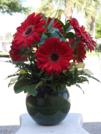 "Half a dozen Fabulous Gerbera Daisies arranged in a 6"" bubble bowl with a variety of foliage."