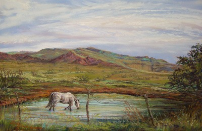 A Long Cool Drink, original pastel landscape by Texas artist Lindy C Severns, Old Spanish Trail Studio, Fort Davis, TX. White horse wades in a Davis Mountains tank.