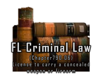 Chapter 790 WEAPONS AND FIREARMS