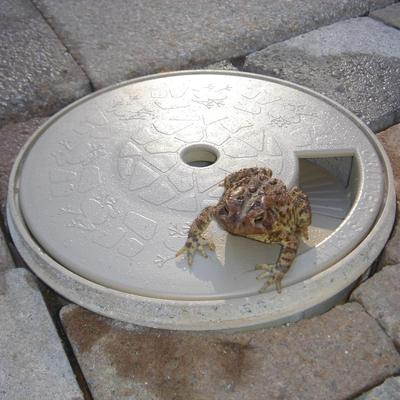 frog saving device