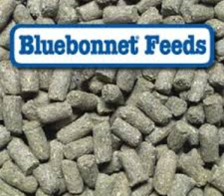Bluebonnet Feeds