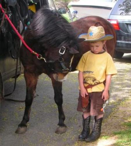 Billy the Kid pony ride pony looking at sad little boy