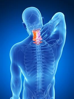 Neck pain Chiropractor Denver