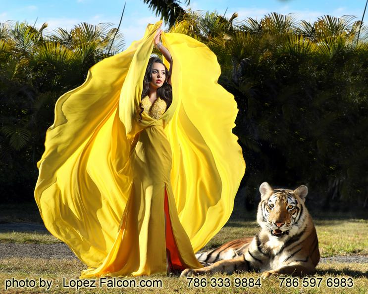 Quince Photography Miami tigre tiger The Secret Gardens Quinceanera Dresses Video Quinces dress