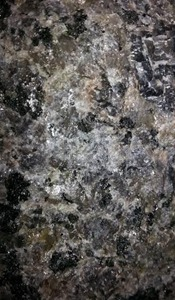 Caledonia Granite Natural Stone