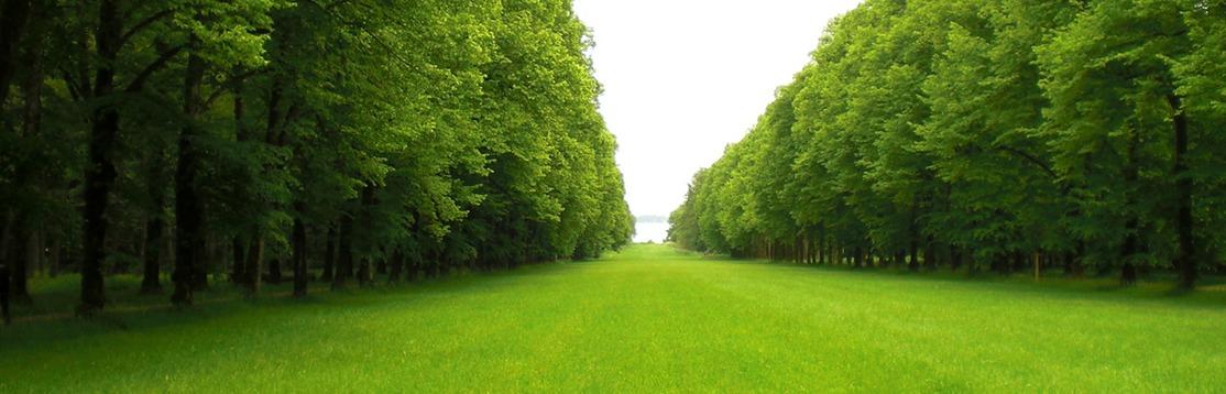 Landscape contractor, landscaping companies - Aurora