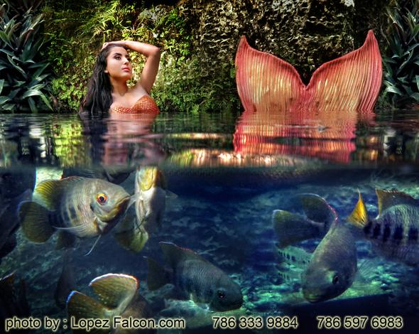 Quinces Mermaid Miami pictures video photography secret gardens Quinceanera mermaid USA