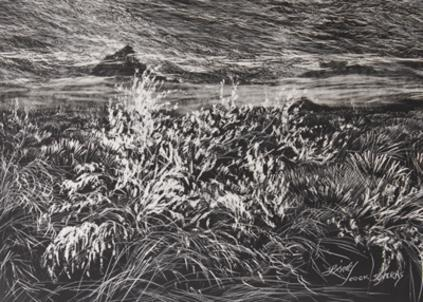 "Sagebrush in a snowstorm, original 5"" x 7"" scratchboard etching by Texas artist Lindy Cook Severns"