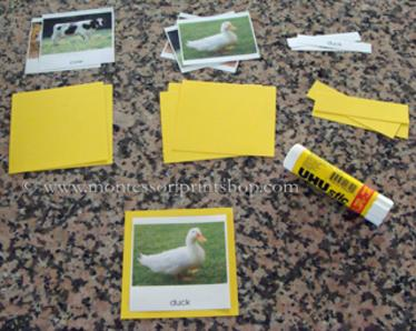 materials required to make montessori 3-part classified cards