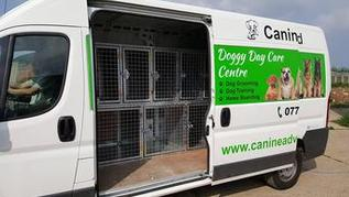 UKs largest doggy day care centre