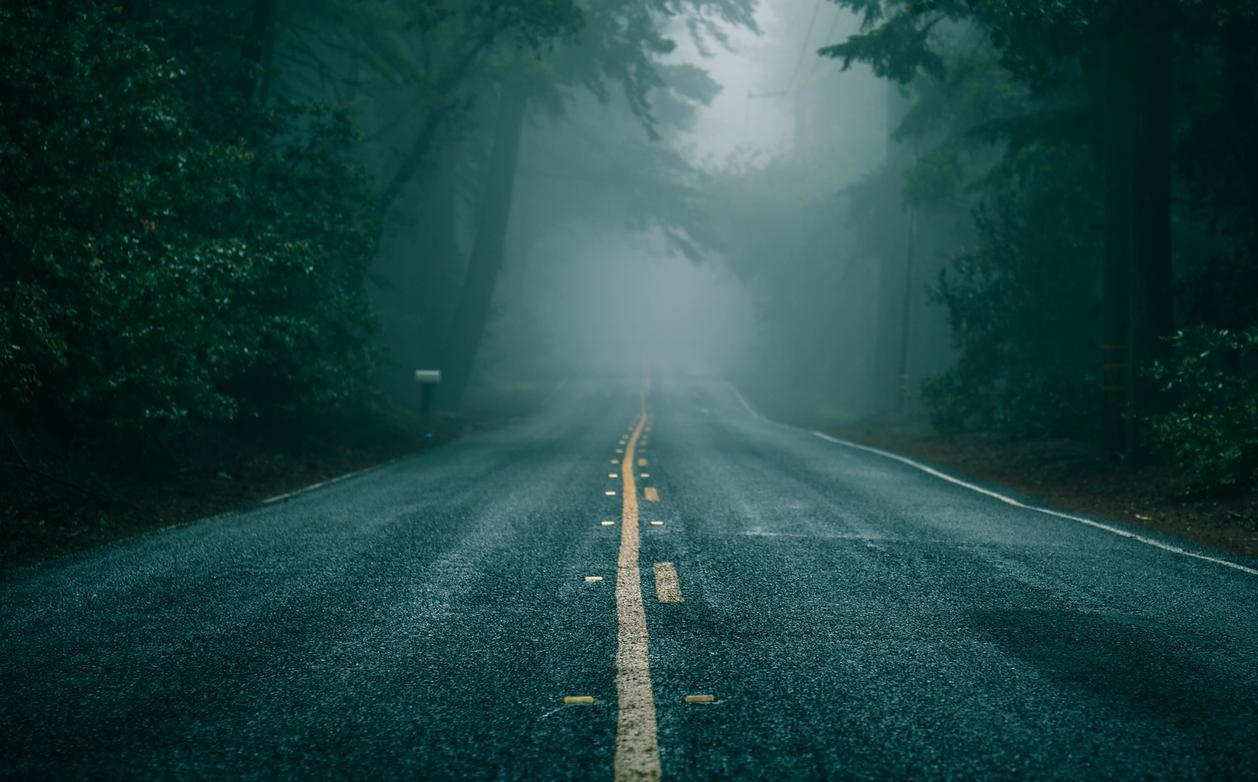 dark and gloomy road nature lovers forest landscape