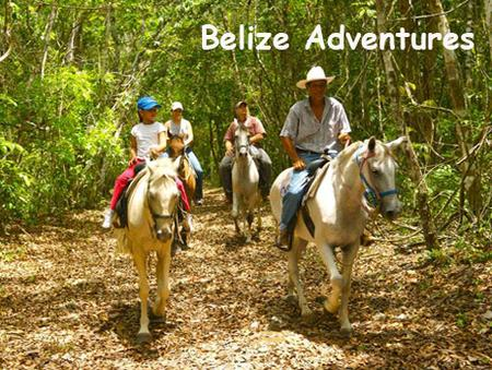 Four people enjoying a horse ride under the jungle canopy. Add horse back riding to your list of Belize Adventure Tours.