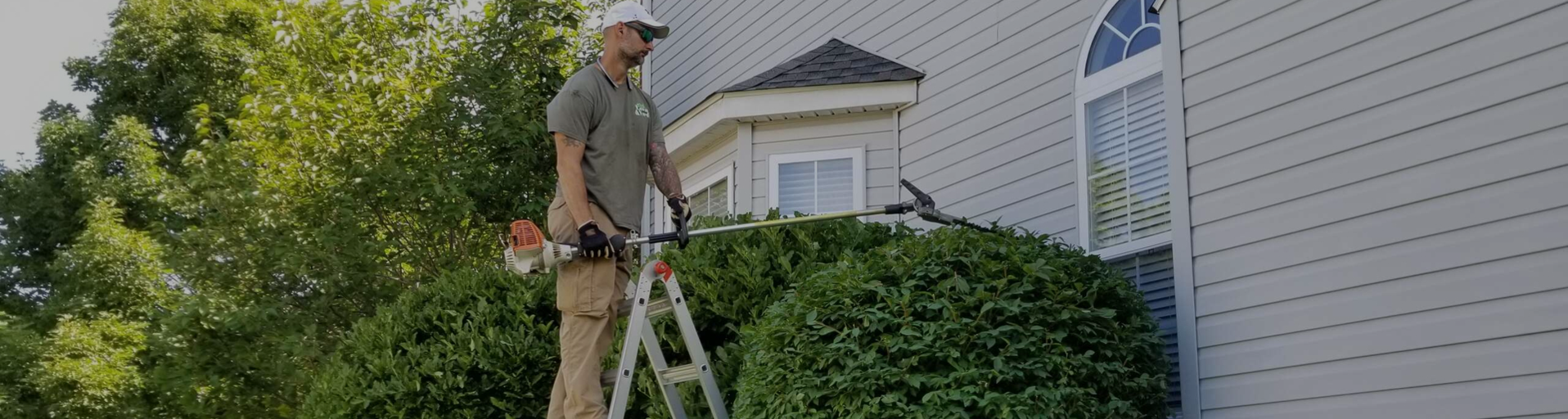 jersey lawn and yard employee trimming shrubs