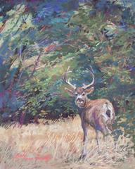 King of the Mountain, pastel mule deer buck by Lindy C Severns