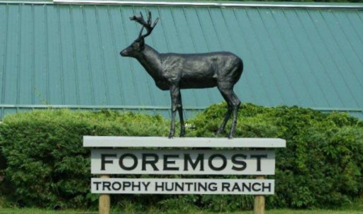 Foremost Hunting Lodge