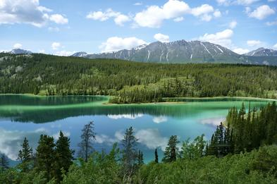 Stunning Emerald Lake is our destination in this private guided tour out of Skagway Alaska, taking you to the Yukon, viewing scenery and looking for wildlife