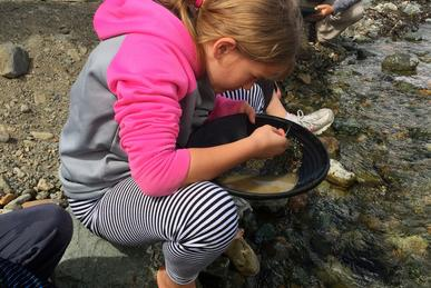 Our Get the Gold tour is an extension of our private Emerald Lake tour out of Skagway Alaska, letting you experience gold panning in Yukon Canada