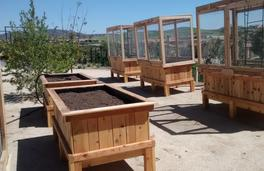 Redwood 4'x6'x2' garden bed