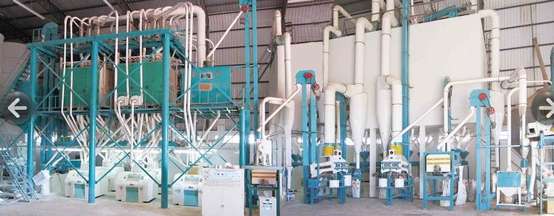 80 tons wheat milling plant