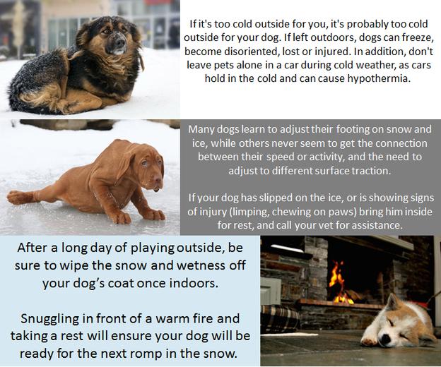 Winter Tips 2