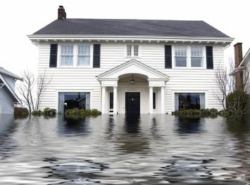 https://theflooringblog.com/flood-damage-and-mold-how-to-start-rebuilding-your-home/