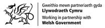 Link to the Welsh Government website