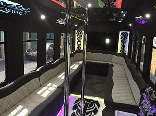 Party Bus 30 Passenger