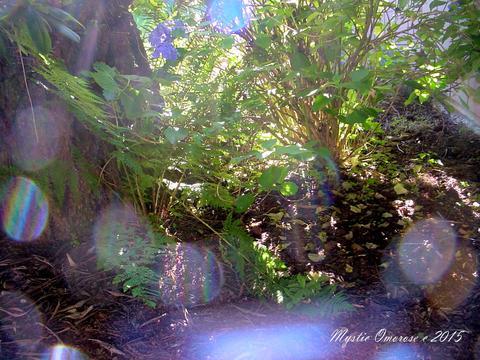 Mystical Photos