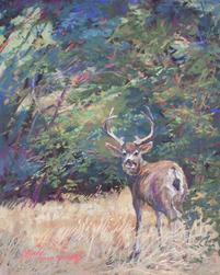 King of the Mountain, Mule Deer buck pastel painting by Lindy C Severns