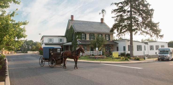 Amish horse and buggy rides