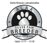 ALAA Silver Paw