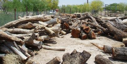 King Mesquite Sawmill Services