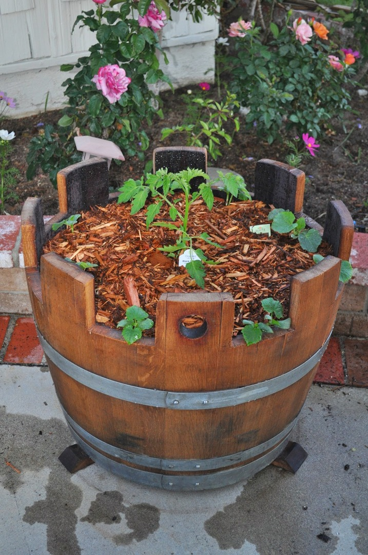 Oak Wine And Whiskey Barrels As Planters And More