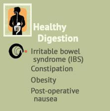 Healthy digestion support, Irritable bowel IBS, Obesity, Post-operative nausea at Ondol Clinic, Toowong
