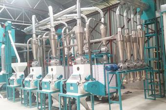20T small scale maize milling machine hot sale in Kenya