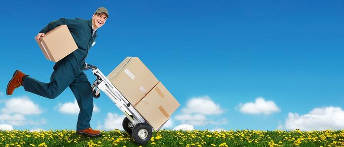 Movers in Cape Town