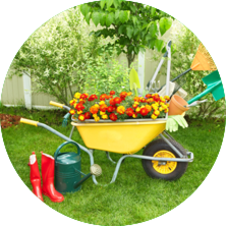 Get quality Horticulture and garden design services from the experts and keep your gardens looking lush and beautiful.