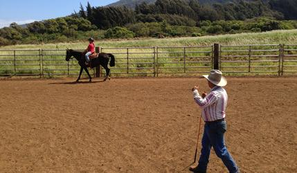 horsemanship lessons, horseback riding lessons, groundwork, maui trail rides