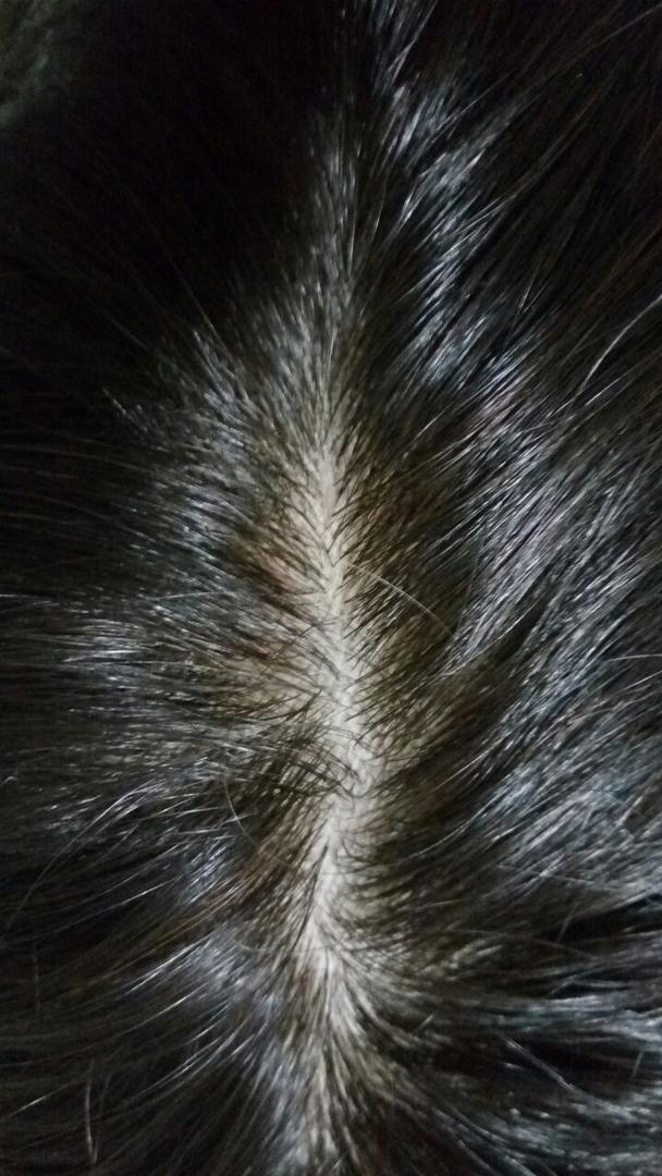 Ahmed Wigswig Shops In Delhiwigs In Delhihuman Hair Wigswigs