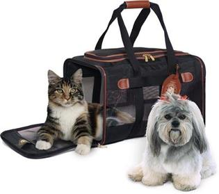 Cat and Dog in luggage