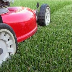 Richmond Mowing - Mowing Lawn Care