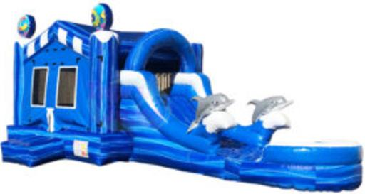 4/1 Dolphin combo Water Slide