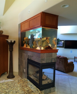custom fish tank for home