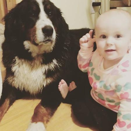 Bernese is very friendly with Babies - Utah Bernedoodles