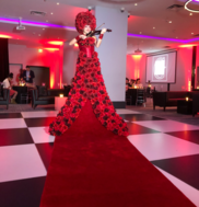 Human Red Carpet Violinist Grand Entrance Event