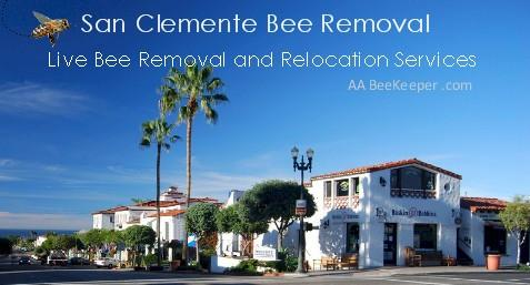 San Clemente Bee Removal and Beekeeper