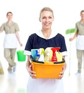 long island maid service