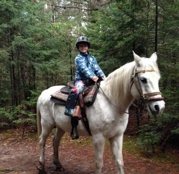 Child Friendly Horses - Lake Placid NY Activities